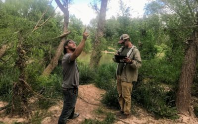Veterans Help the Verde Restoration Coalition Track Success and Fix Failures